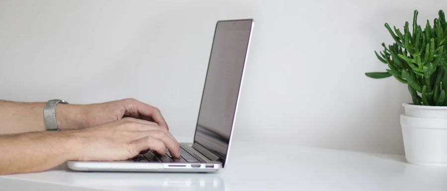 man typing on a laptop with a plant on the desk